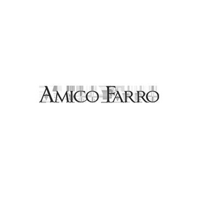 realizzazione siti web Amico Farro