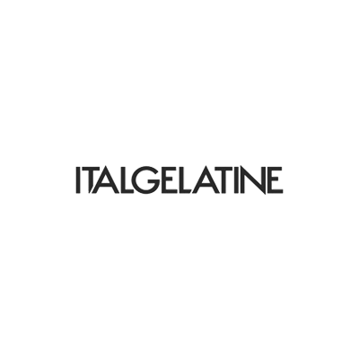 realizzazione siti web italgelatine
